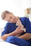 Профессиональный молодой ветеринар наслаждается его работой стоковая фотография rf