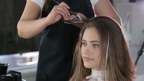 Профессиональный парикмахер, стилизатор крася предназначенные для подростков волосы девушки сток-видео