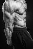 Профессиональный спортсмен на темной предпосылке стоковое изображение