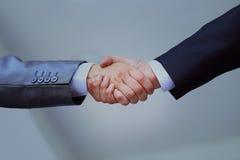 2 профессиональных бизнесмены тряся руки Стоковые Фотографии RF