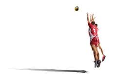 2 профессиональных волейболиста изолированного на белизне Стоковое фото RF