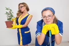 2 профессиональных уборщика сексуальная busty девушка и Стоковое Изображение