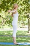 Профилируйте взгляд красивой женщины пригонки делая йогу распространяя ее оружия Стоковые Фотографии RF