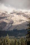 Профиль Mount Saint Helens пасмурный Стоковое Изображение RF