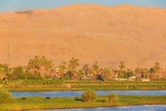 Проходить Ezbet el-Gawad на золотой час стоковая фотография