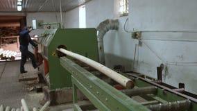 Процесс человека контролируя woodworking на cylindering машине Индустрия тимберса сток-видео