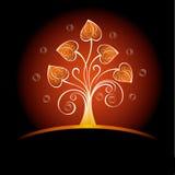 прочешите декоративные сердца Стоковое Изображение RF