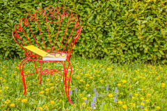 Прочитайте книгу в луге одичалых красочных цветков Стоковое фото RF
