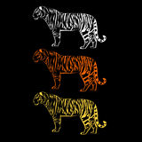 Прочности иллюстрации тигра график живой природы одичалой млекопитающийся иллюстрация штока