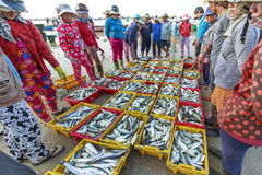Продавает рыбные базары с аукциона в прибрежных рыбацких поселках Стоковое фото RF