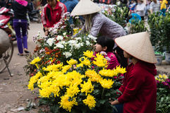 Продавать цветки на лунном новом празднике года-Tet Стоковое Изображение