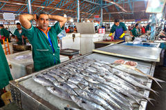 Продавец рыб в зеленой форме, исламской республике Ирана Стоковое Фото