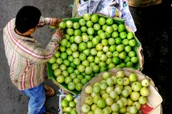 Продавец улицы манго Стоковые Изображения RF