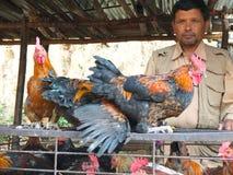 Продавец цыпленка в Непале Стоковое Изображение RF