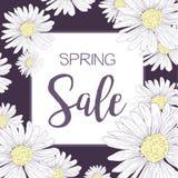 Продажа весны Стоковая Фотография