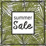 Продажа лета с декоративной тропической картиной Стоковое Фото