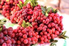Продажа красной виноградины в местном рынке Стоковое Изображение RF