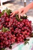 Продажа красной виноградины в местном рынке Стоковые Изображения