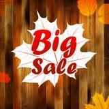 Продажа осени, предпосылка листьев осени добавочное EPS10 Стоковое Изображение RF
