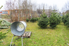 Продажа рождественской елки Стоковое фото RF