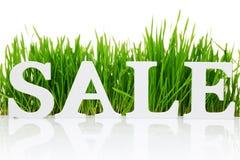 Продажа слова с свежей травой стоковое изображение rf