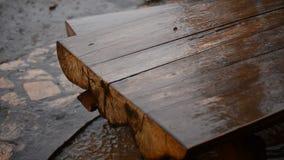 Проливной дождь в саде сток-видео