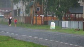 Проливной дождь в туристической зоне Altai Krai. сток-видео