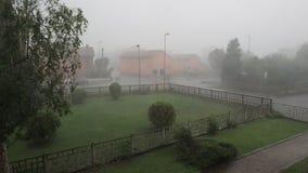 Проливной дождь и оклик видеоматериал