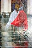 Проливной дождь стоковое изображение rf