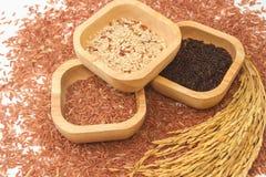 Продукты зерна и хлопьев Стоковое Изображение