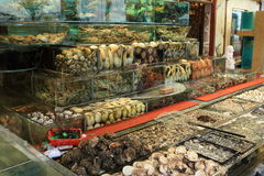 продукты моря ресторана Стоковое фото RF