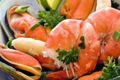 продукты моря диска Стоковая Фотография RF
