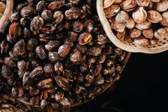 Продукт моря куколя и clam сырцовый на азиатском уличном рынке Стоковая Фотография RF