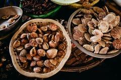 Продукт моря куколя и clam сырцовый на азиатском уличном рынке Стоковые Изображения