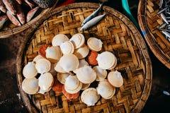Продукт моря куколя и clam сырцовый на азиатском уличном рынке Стоковые Фото