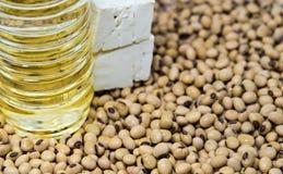 Продукт фасоли сои Стоковое фото RF