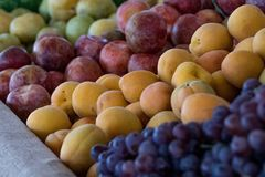 Продукция рынка фермера: виноградины & каменный плодоовощ Стоковые Изображения RF
