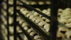 Продукция сладостных плюшек на фабрике сток-видео