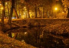 Пруд в парке на ноче Стоковое Изображение