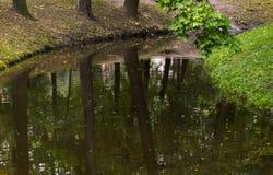 Пруд в парке осени Стоковые Изображения