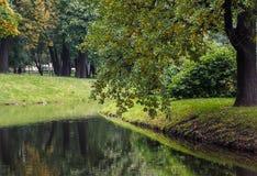 Пруд в парке осени Стоковая Фотография