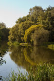 Пруд в парке Pokrovskoe-Streshnevo стоковое фото rf