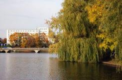 пруд города Стоковое Изображение RF