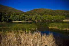 пруд горы стоковые изображения rf
