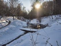 Пруд и след в парке зимы Стоковые Фото