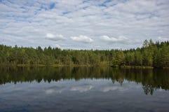 Пруд леса, с отражением зеленых деревьев и облаков Стоковое фото RF