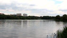 Пруд летом Вы можете увидеть город в расстоянии сток-видео