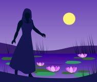 пруд лилии девушки иллюстрация вектора
