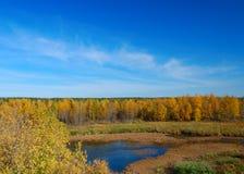 пруд осени Стоковые Фото