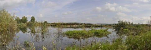 пруд панорамы Стоковое Изображение RF